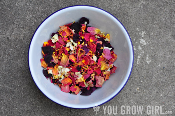 dehydrated rose petals