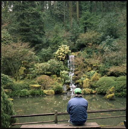 japanesegarden8.jpg