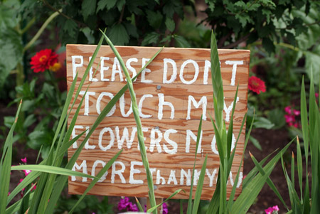 sign_touchplants.jpg