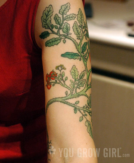 Work in Progress: Dragon & Flowers (Full colour sleeve tattoo). Mar 23 2010